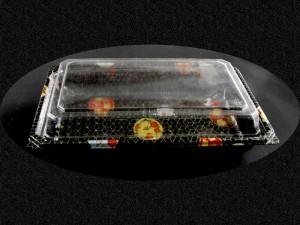 Caserole din Plastic pentru Sushi  Caserole plastic sushi caserole plastic sushi caserole cu capac 20 2 300x225