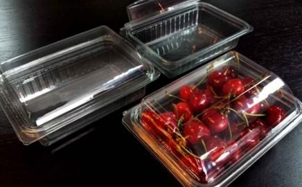 Caserole din plastic fructe