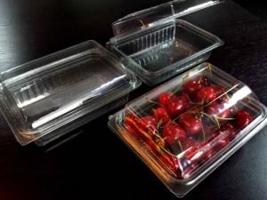 caserole din plastic pentru fructe