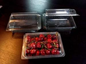 caserole din plastic pentru cirese