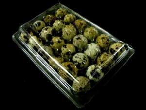 Caserole pentru oua de prepelita  Caserole oua prepelite cofraje oua prepelita 24 compartimente 24 12 300x225