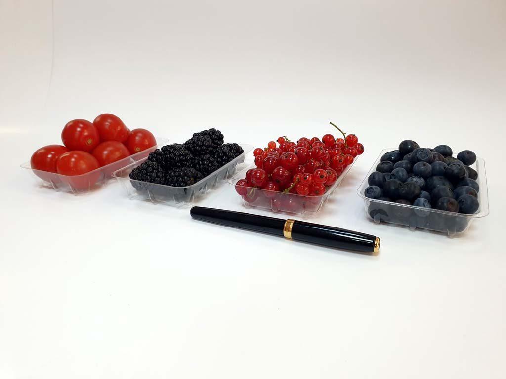 4094 - afine, mure, coacaze, rosii cherry 1